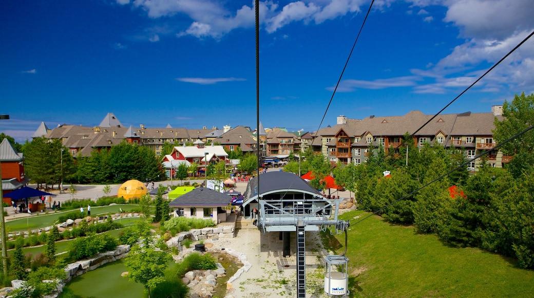 Blue Mountains showing a garden and a gondola