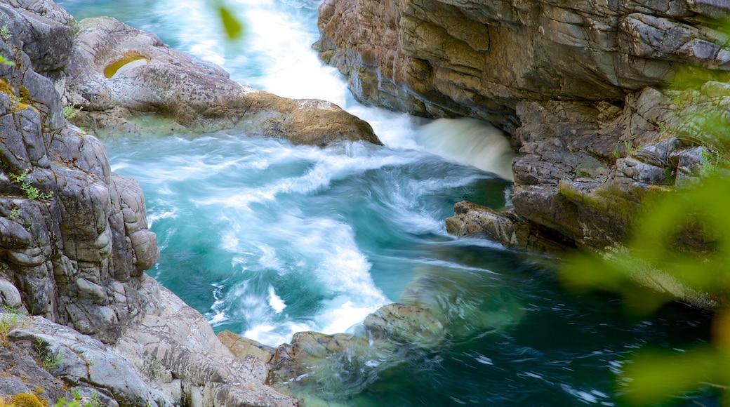 Little Qualicum Falls Provincial Park showing rapids