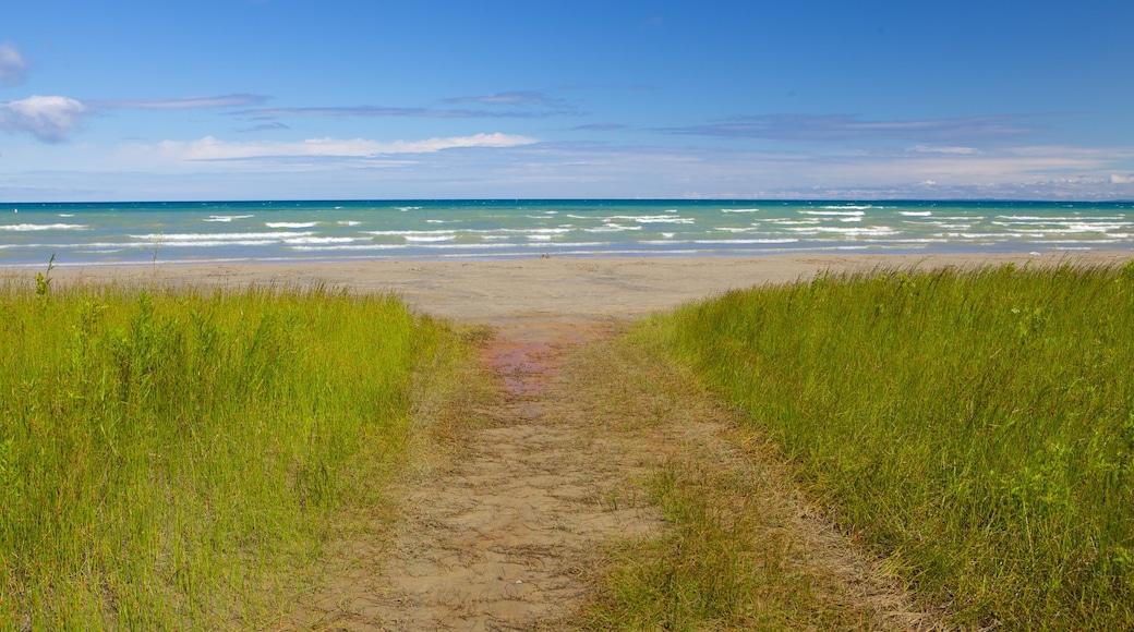 Wasaga Beach Provincial Park which includes a sandy beach