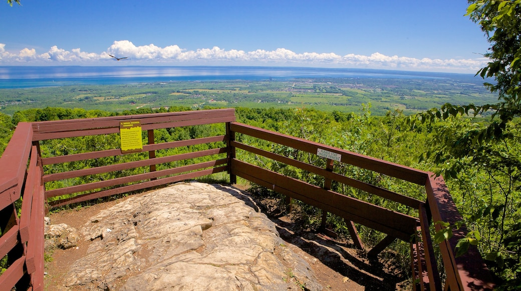 Collingwood Scenic Caves featuring views