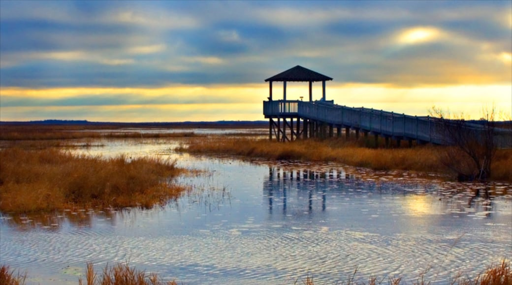 Lake Charles featuring views, a sunset and wetlands
