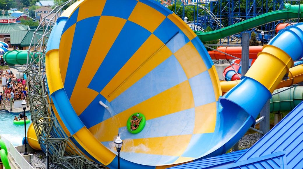 Hersheypark mostrando um parque aquático