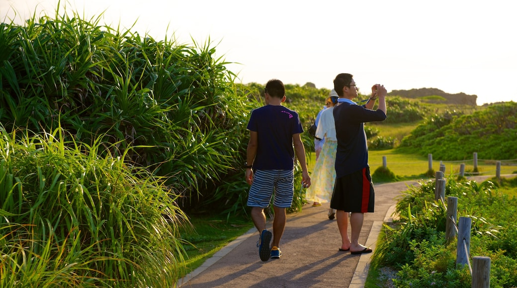 Cape Manza which includes a garden as well as a small group of people