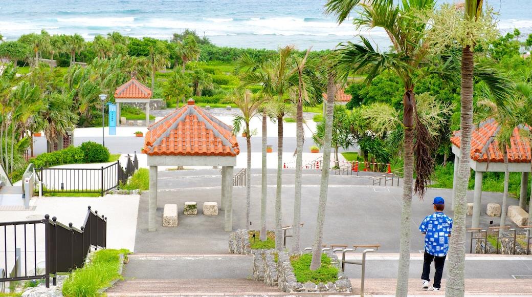 Ocean Expo Memorial Park das einen tropische Szenerien und allgemeine Küstenansicht