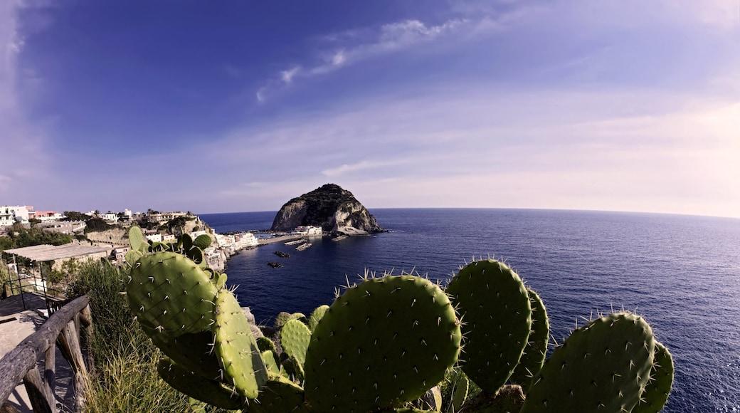 Ischia fasiliteter samt kyst