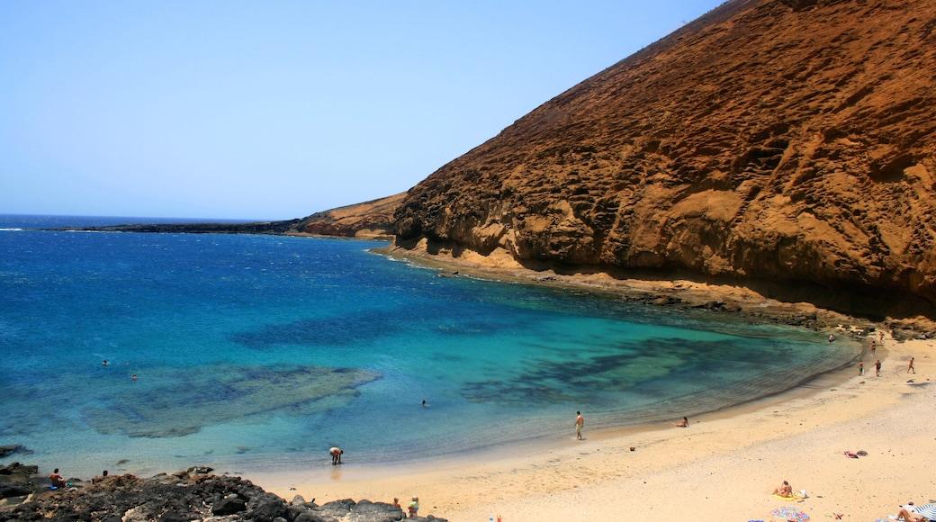Lanzarote bevat bergen en een zandstrand
