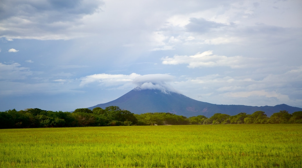 Managua showing tranquil scenes