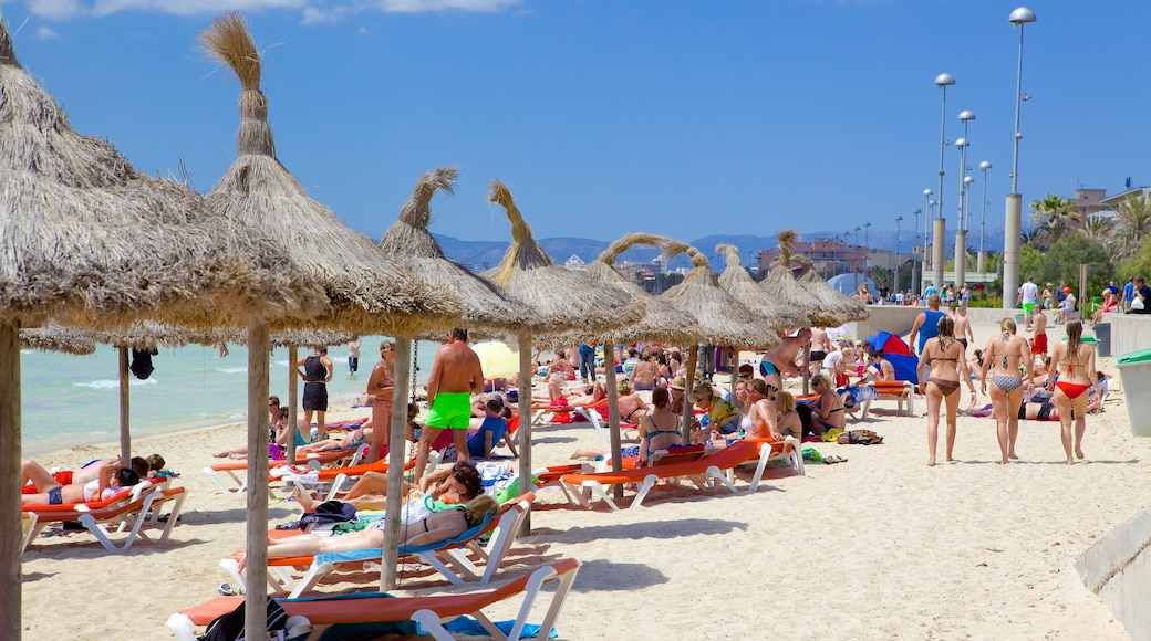 El Arenal showing a sandy beach as well as a large group of people