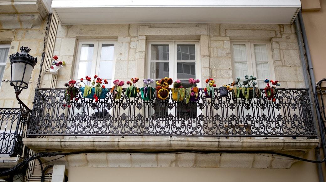 La Coruña que incluye flores y una casa