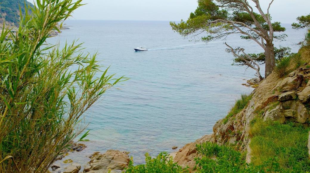 Llafranc som visar klippig kustlinje