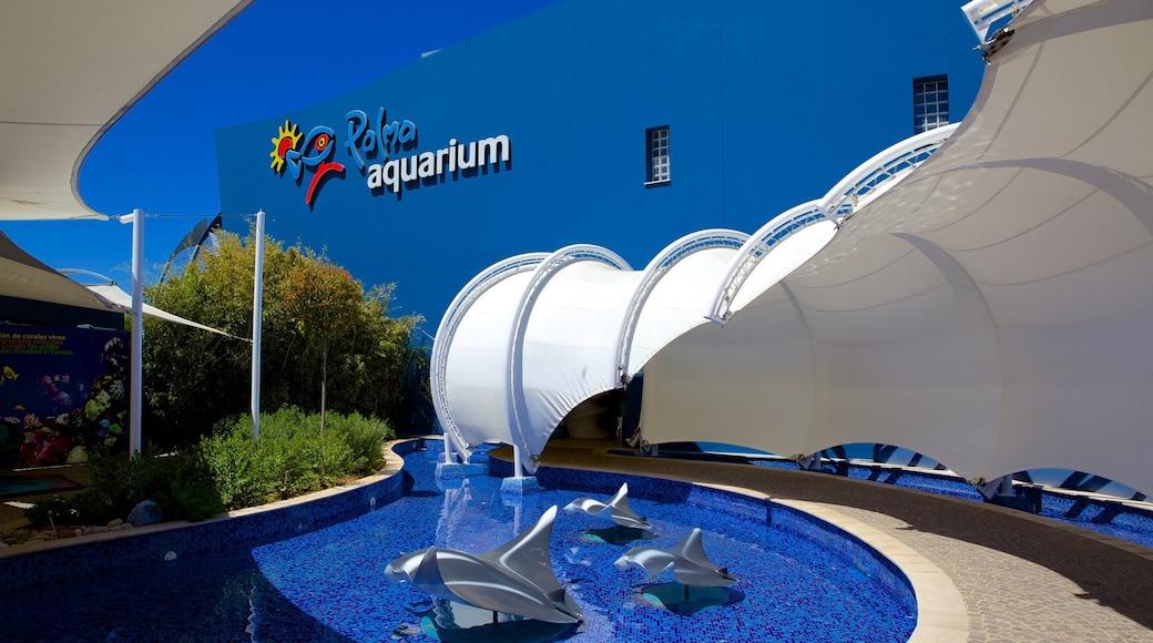 Palma Aquarium showing outdoor art and marine life