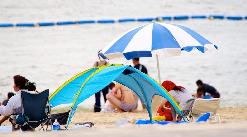 Okinawa featuring a sandy beach