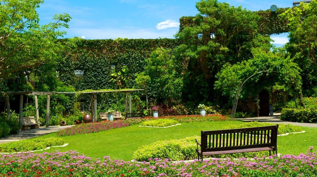 Okinawa das einen Park