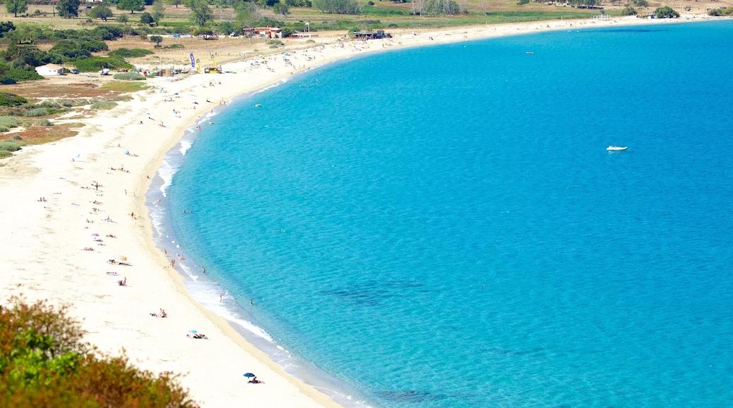 Calvi which includes a sandy beach