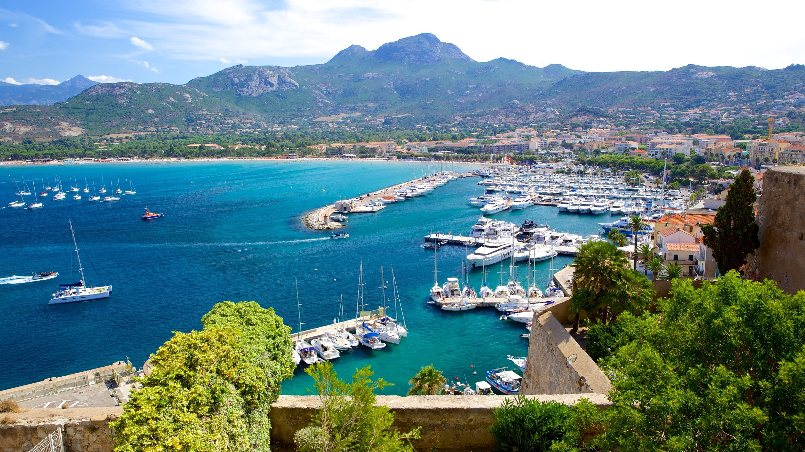 Calvi, Haute-Corse, Frankrike