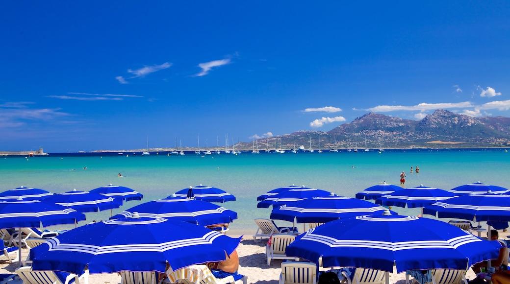 Calvi Beach featuring a beach and general coastal views