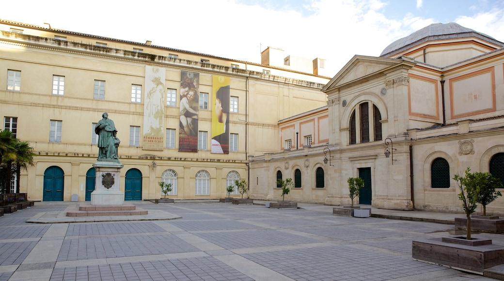Musée Fesch montrant square ou place
