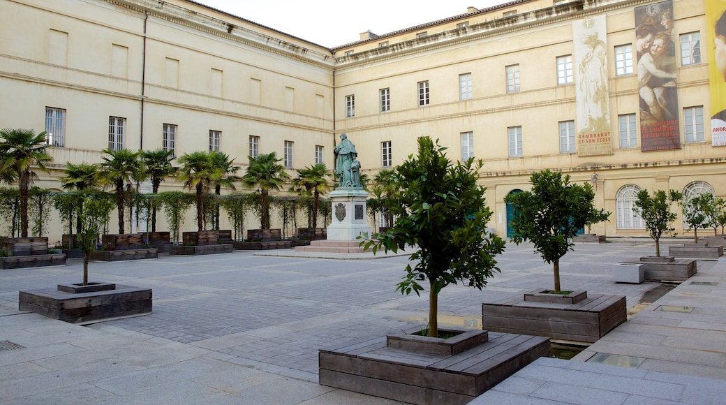Musée Fesch mettant en vedette square ou place