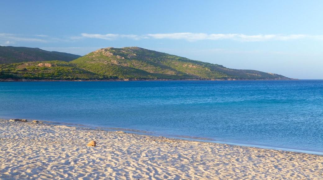 Plage de Balistra montrant plage de sable et vues littorales