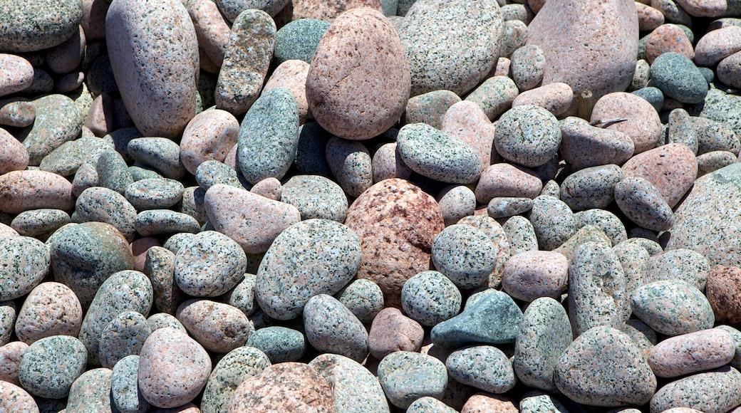 Ingonish Beach featuring a pebble beach