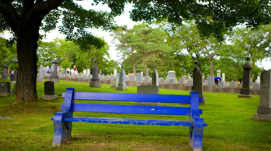 Fairview Cemetery showing a memorial and a cemetery