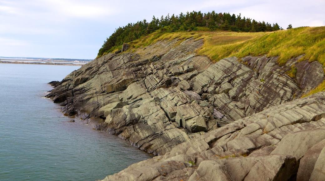 Cape Forchu Lightstation ofreciendo costa rocosa