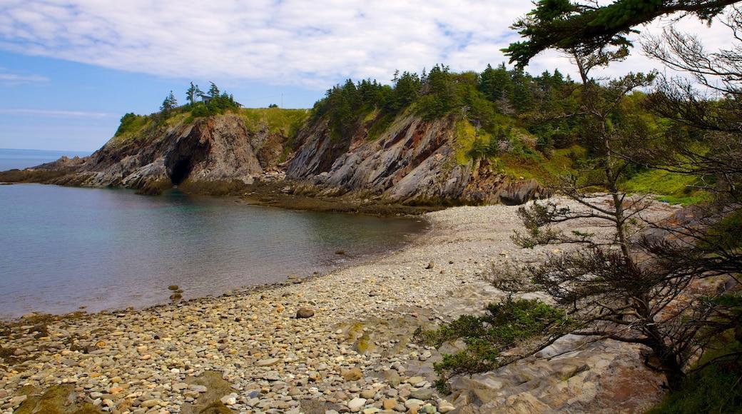 Cala Smuggler\'s Cove que incluye una playa de guijarros, vistas generales de la costa y costa rocosa