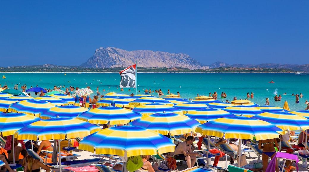San Teodoro que incluye vistas generales de la costa y una playa de arena y también un gran grupo de personas
