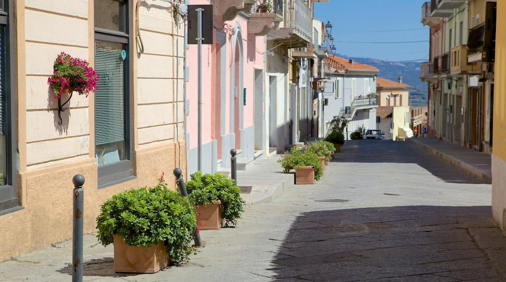 Arzachena mostrando strade