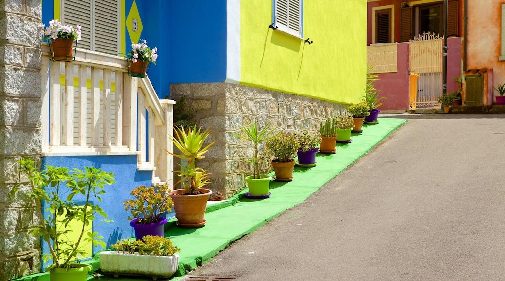 Santa Teresa di Gallura showing street scenes