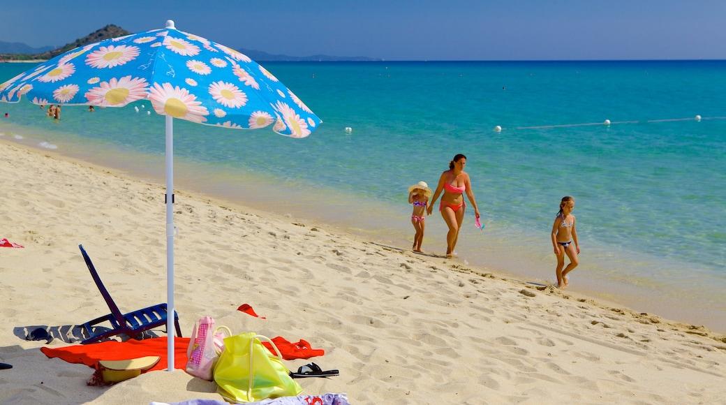 Cala Sinzias which includes a beach as well as a family