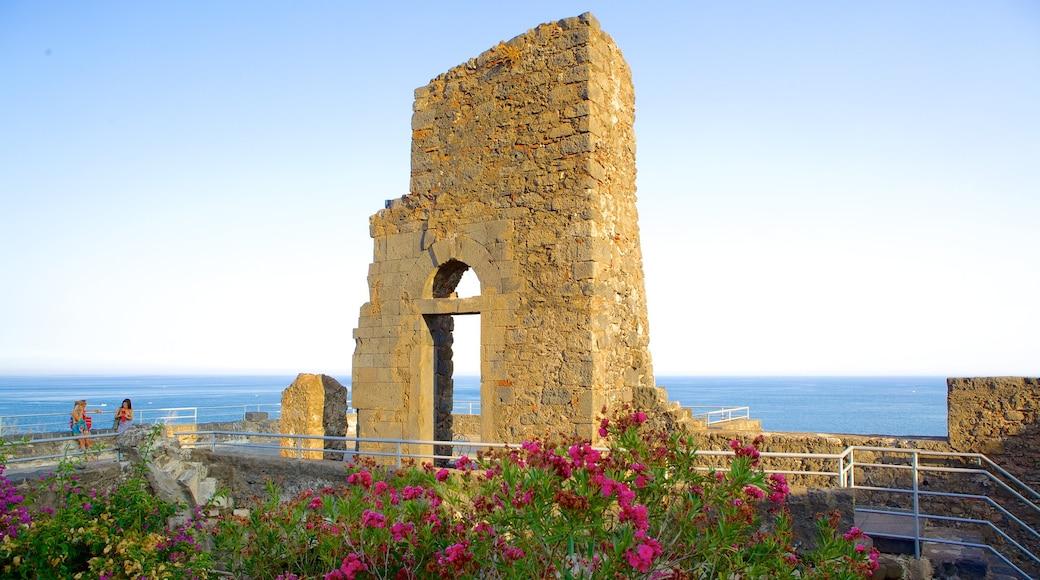 Aci Castello ofreciendo ruinas de edificios, flores y arquitectura patrimonial