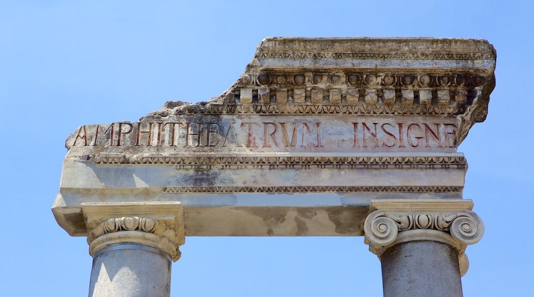 Anfiteatro romano ofreciendo ruinas de edificios y señalización