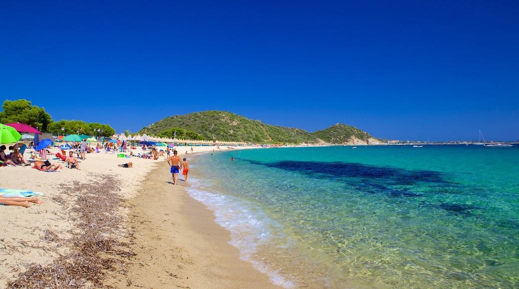 Playa Campus mostrando una playa