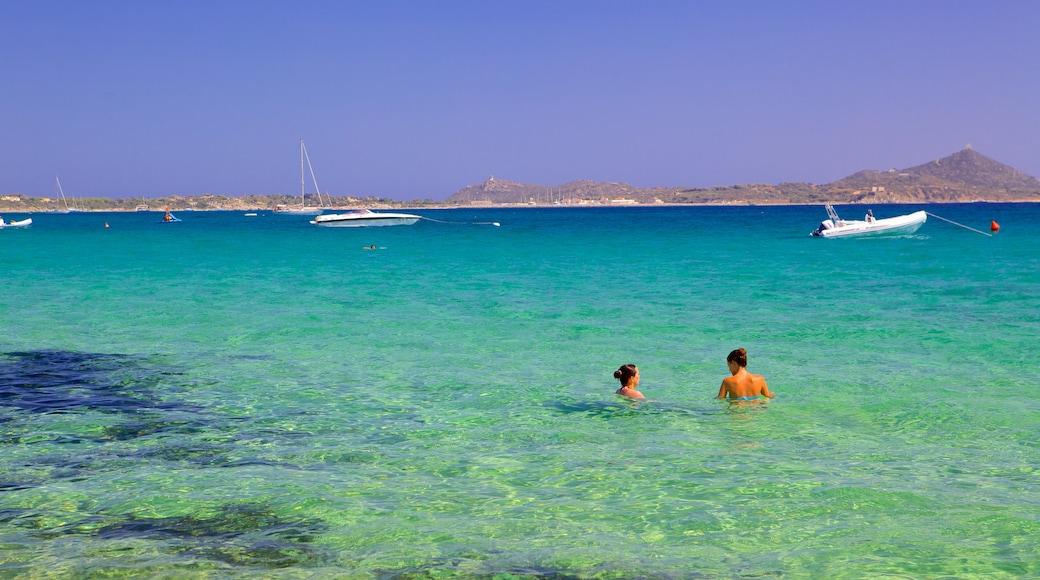 Playa Campus que incluye natación