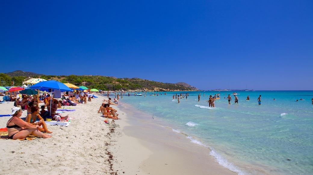 Playa Simius mostrando natación y una playa de arena y también un gran grupo de personas
