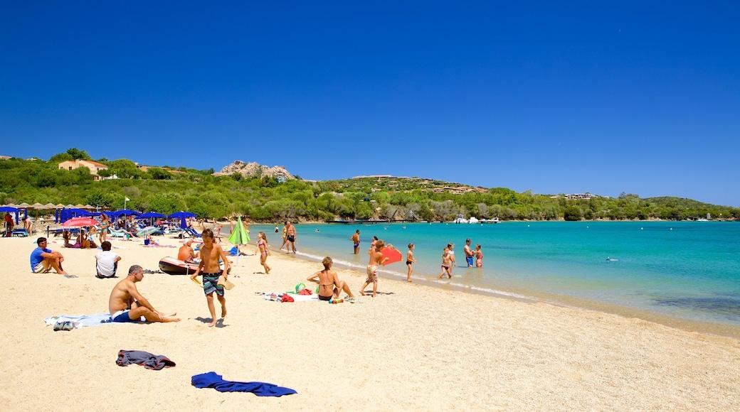 Strand von le Saline welches beinhaltet Sandstrand, Schwimmen und Landschaften