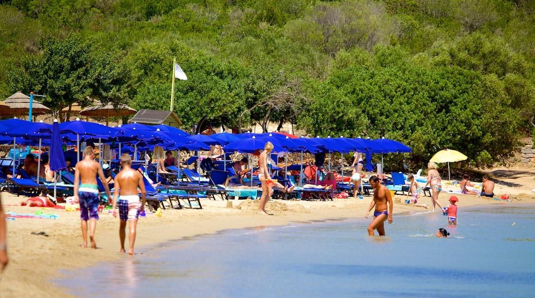 Playa Le Saline que incluye una playa de arena y natación y también un gran grupo de personas