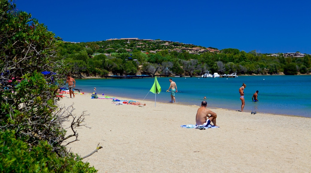 Playa Le Saline que incluye natación, una playa y vistas generales de la costa