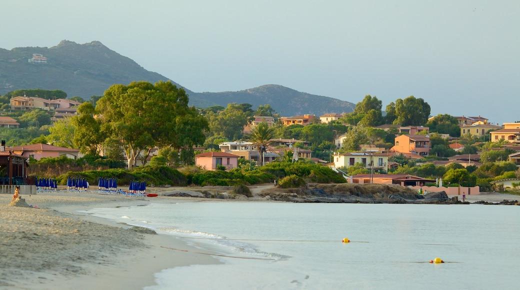 Plage de Pittulongu qui includes ville côtière et plage