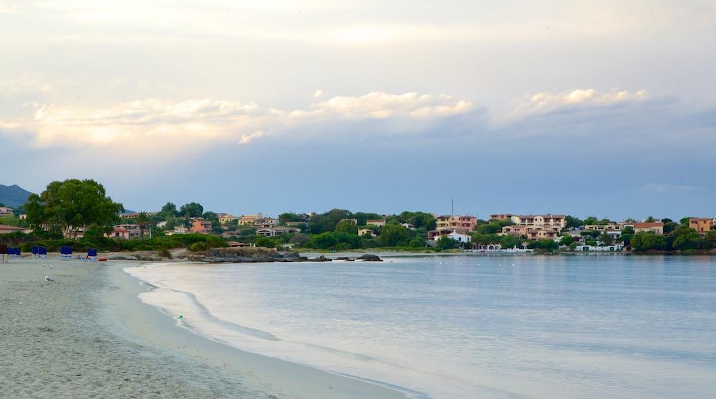 Playa de Pittulongu ofreciendo una playa de arena