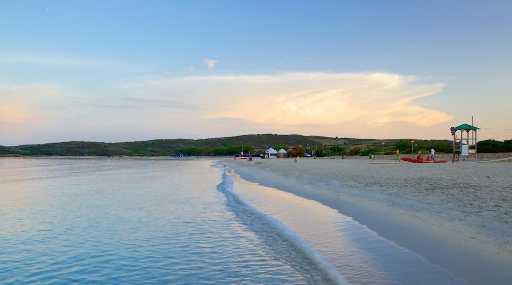 Plage de Pittulongu montrant plage de sable