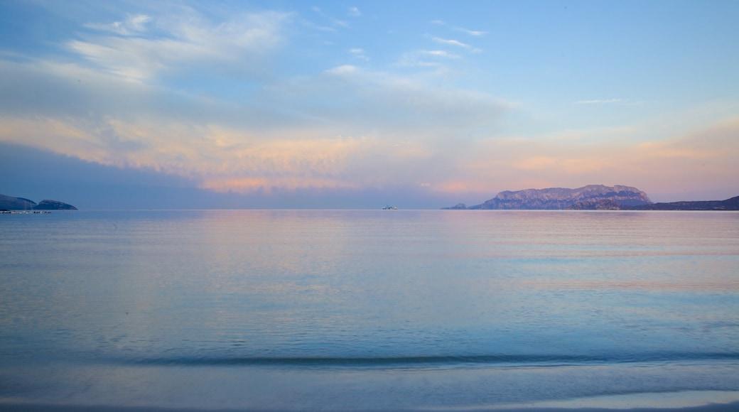 Plage de Pittulongu qui includes coucher de soleil et plage de sable