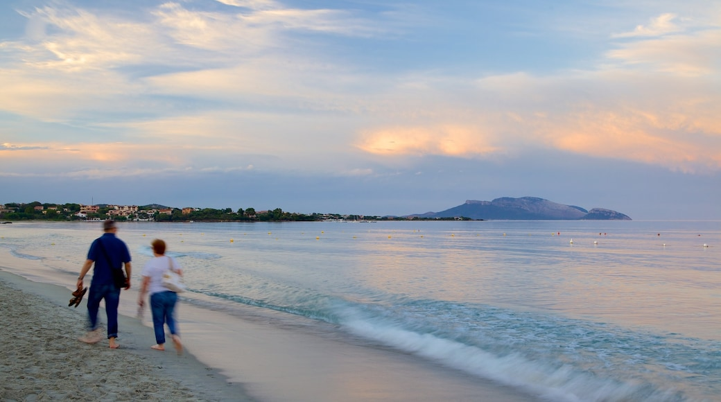 Plage de Pittulongu montrant coucher de soleil et plage de sable aussi bien que couple