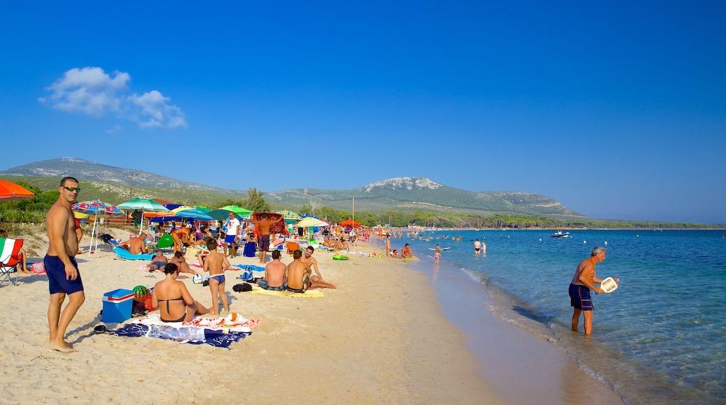 หาด Mugoni แสดง ชายหาด ตลอดจน คนกลุ่มใหญ่