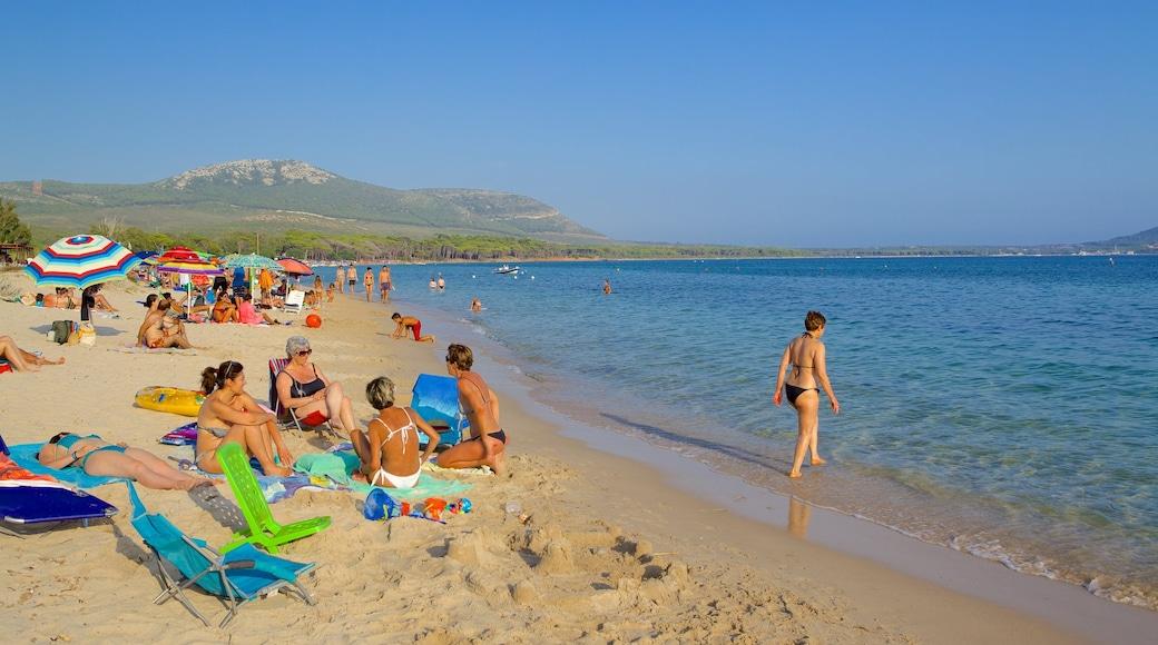 หาด Mugoni ซึ่งรวมถึง ชายหาด