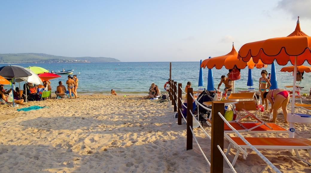 หาด Mugoni เนื้อเรื่องที่ หาดทราย