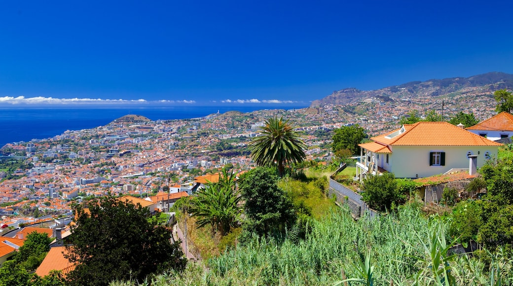 Funchal which includes a coastal town and a house