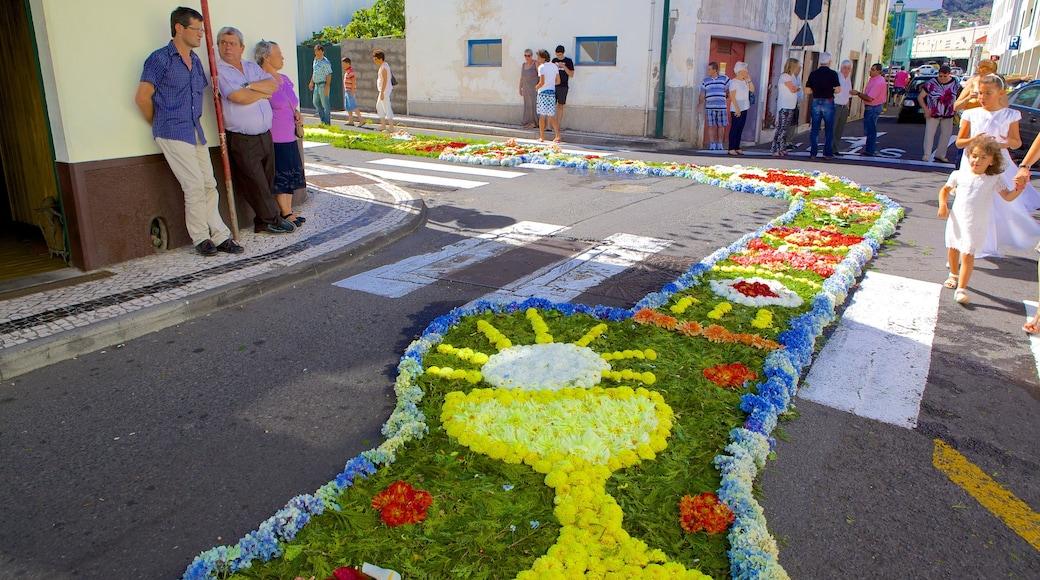 Machico montrant fleurs, art en plein air et scènes de rue