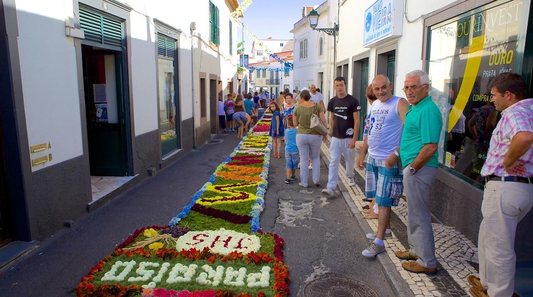 Machico montrant art en plein air, fleurs et scènes de rue